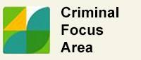 Criminal Focus Area